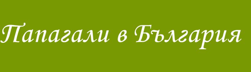 Папагали в България